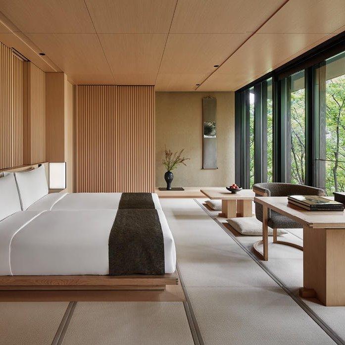 アマン京都の楢
